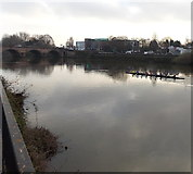 SO8454 : Rowers on the Severn in Worcester by Jaggery