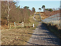 SU9160 : Cattle grid, Pirbright Ranges by Alan Hunt