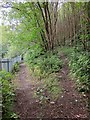 SE0825 : Birks Hall Lane by Derek Harper