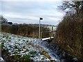 SJ4460 : This way to Saighton by Christine Johnstone