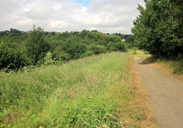 Path by Brackenbed Sports Park