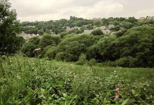 Hebble Brook valley at Wheatley
