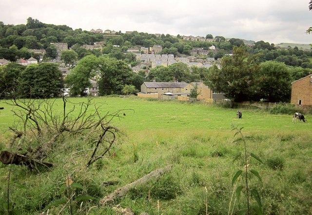 Field near Wheatley