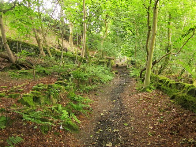 Bridleway to Doctor Hill