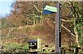J3370 : Fingerpost sign, Lagan towpath, Belfast - January 2015(1) by Albert Bridge