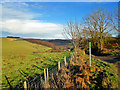 SE8483 : Outgang Lane View by Scott Robinson