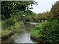 SJ9686 : Turflea Narrows near Strines, Stockport by Roger  Kidd