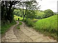 SE0526 : Track to Ramsden Wood Reservoir by Derek Harper