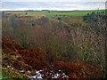 SE8490 : Levisham Brow View by Scott Robinson