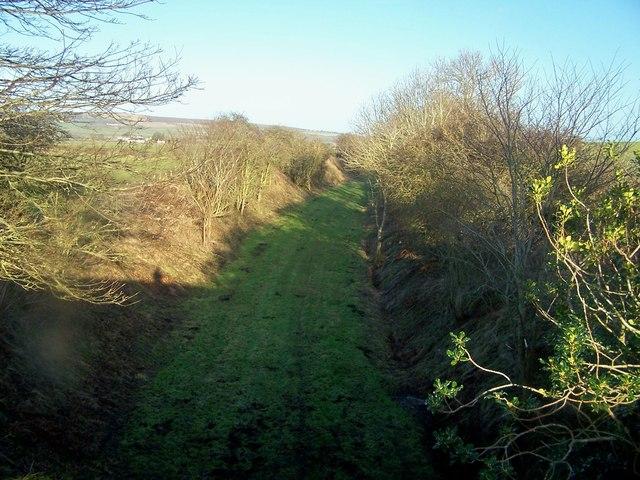 Old railway cutting
