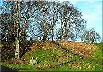 NY4057 : Climbing Hadrian's Wall by Mary and Angus Hogg