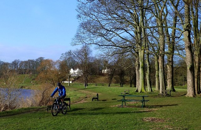 Rickerby Park View