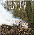 TG1521 : Burning rubbish in Nine Acre Plantation by Evelyn Simak