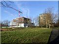 TQ4175 : Kidbrooke Village: development in progress by Stephen Craven