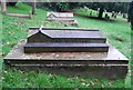 TQ5840 : Grave, Woodbury Park Cemetery by N Chadwick