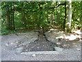 TQ0183 : Dry ditch, Black Park by Robin Webster