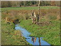 TQ0586 : Denham Country Park by Alan Hunt