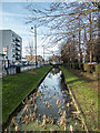 TQ3396 : New River, Enfield Town by Christine Matthews