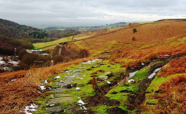 Cleveland Way View