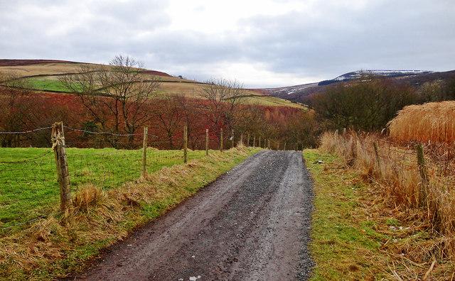 Track to Oak Dale