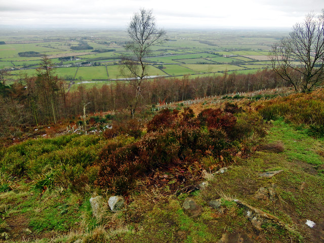 Swinestye Hill Viewpoint