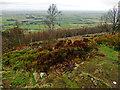 SE4599 : Swinestye Hill Viewpoint by Scott Robinson