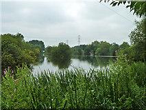 TQ0481 : Farlows Lake by Robin Webster
