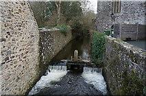 SM7525 : River Alun, St David's, Pembrokeshire by Ian S