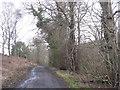 NT4936 : Heatheryett Drive by M J Richardson