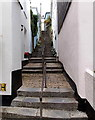SX8751 : Long flight of steps up from Higher Street, Dartmouth by Jaggery