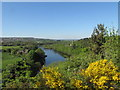 NZ1064 : View of the River Tyne from Wylam Scar by Andrew Tryon