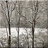 SJ9594 : Snow at Swains Valley by Gerald England