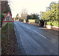 SO5239 : Elderly people sign, Hampton Park Road, Hereford by Jaggery