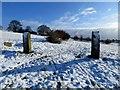 SD7411 : Gateposts in the snow by Philip Platt