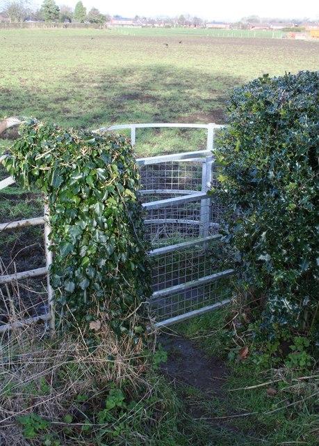 Unresponsive kissing Gate