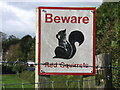 NY1034 : Beware Red Squirrels by David Purchase