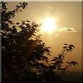 SJ9196 : Sunlight on Audenshaw Reservoirs by Gerald England