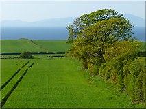 NY0638 : Farmland, Crosscanonby by Andrew Smith