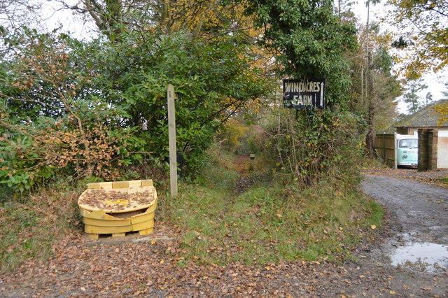 Sussex Border Path to Windacre Farm