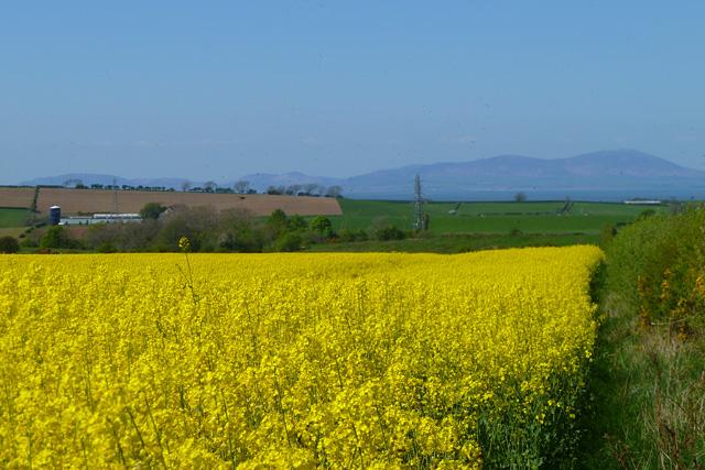 Farmland, Gilcrux