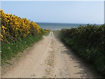 J3720 : Access lane between the A2 and the Annalong Coastal Path by Eric Jones