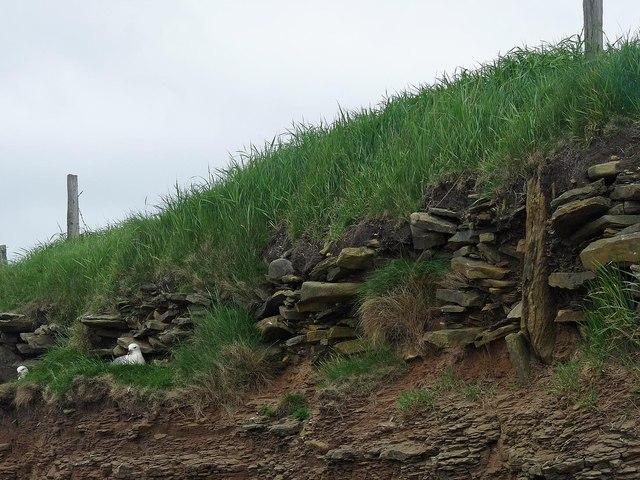 Settlement, Clestrain, Stronsay, Orkney