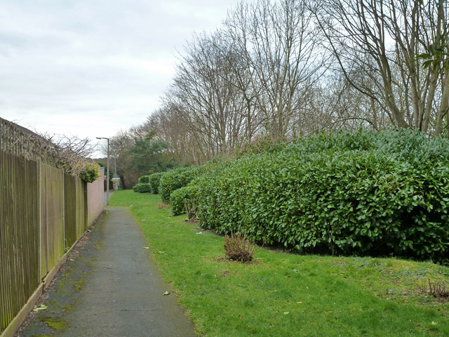 Path and green area between housing and A41
