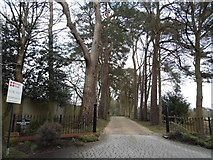 SU9266 : The entrance to Earleywood Pines, South Ascot by David Howard