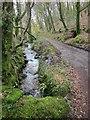 SX1567 : Stream below Trenay by Derek Harper