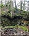 SX1567 : Quarry below Trenay by Derek Harper