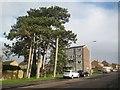 TL0307 : Hemel Hempstead: Long Chaulden by Nigel Cox