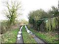 TM2895 : Farm track to Springwood by Evelyn Simak