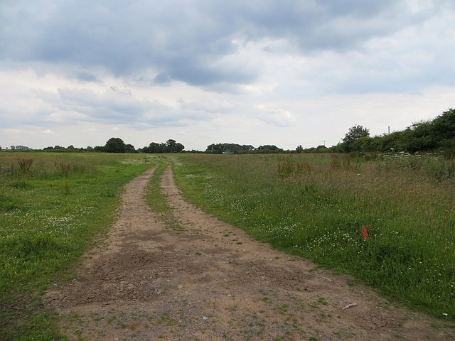 Flat field, Stableford