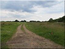 SO7598 : Flat field, Stableford by Richard Webb